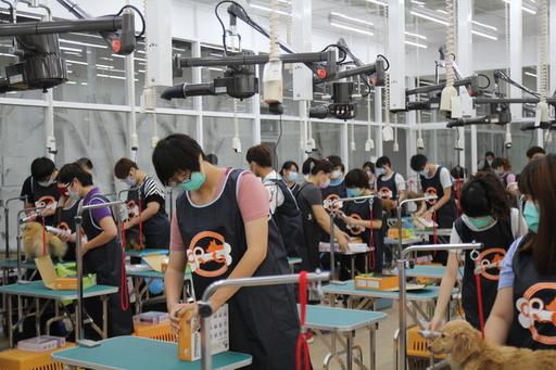 大仁科技大學獲准設立南台灣唯一寵物美容技能丙級檢定術科場地