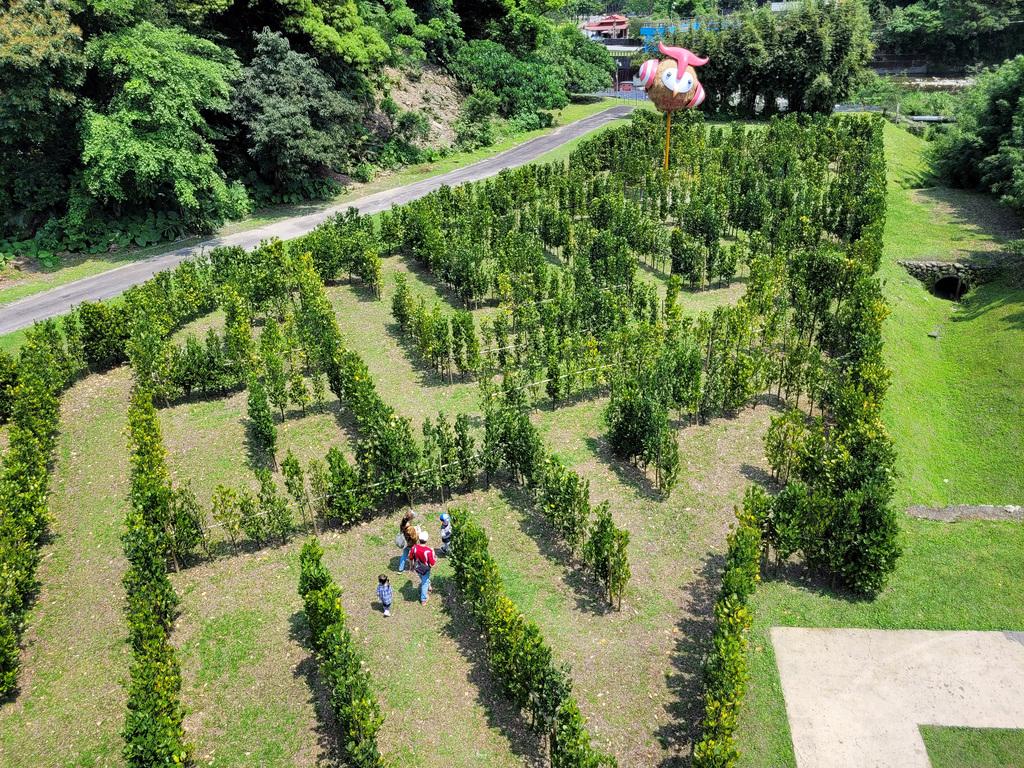 Green Expo maze