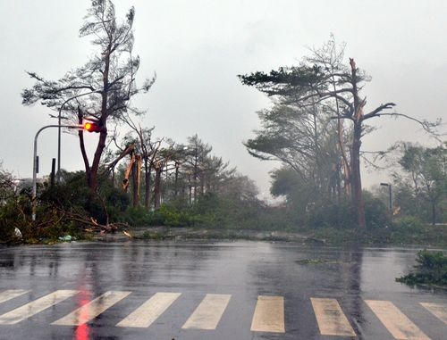 A scene in Taitung after the storm makes landfall early Friday