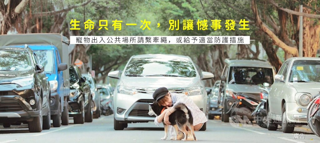 Courtesy of the Taipei City Animal Protection Office