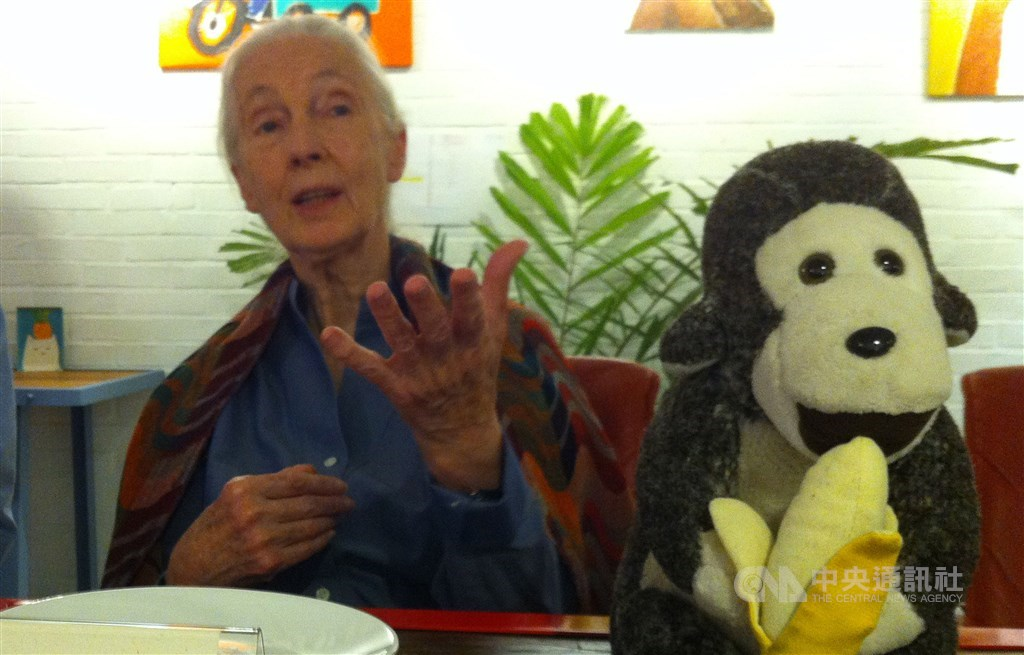 Jane Goodall. / CNA file photo