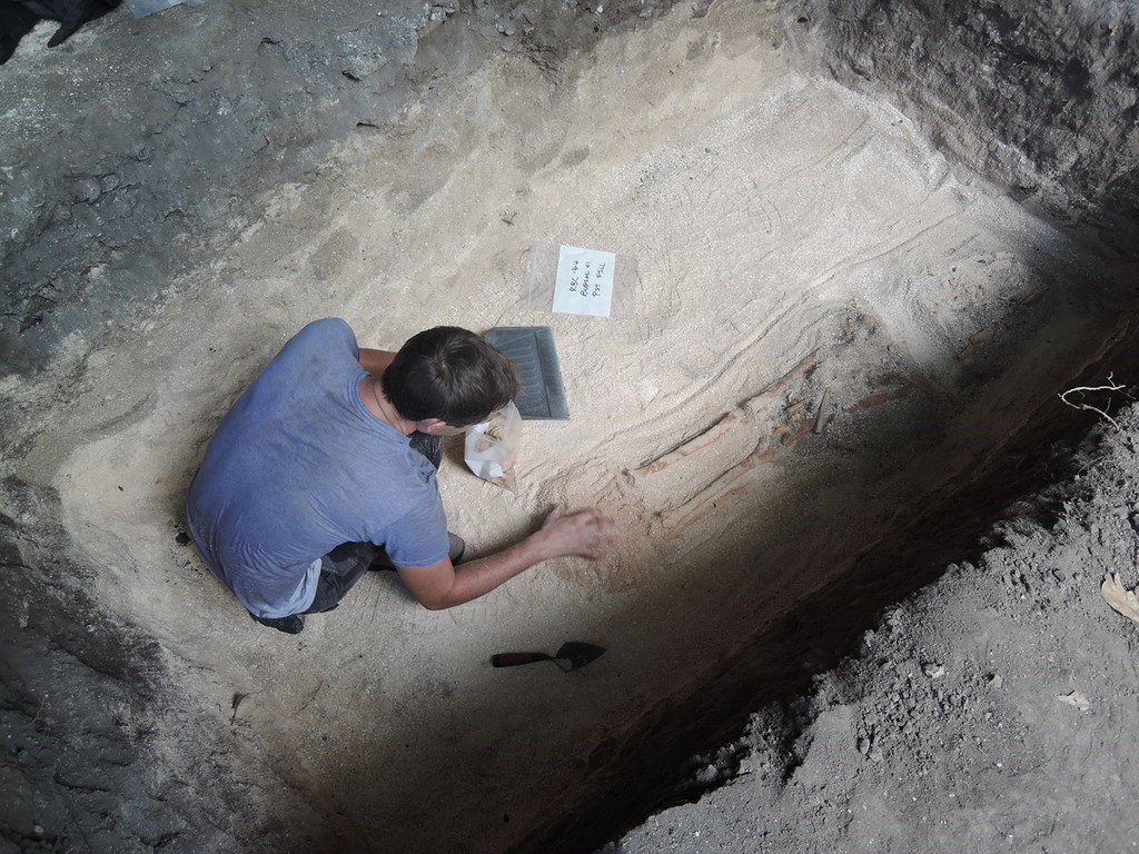 Ancient skeletons found in Ritidian, Guam. Photo courtesy of Hung Hsiao-chun