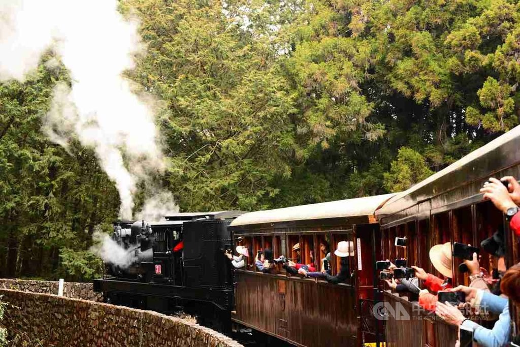 Alishan to usher in cherry blossom season with steam train rides