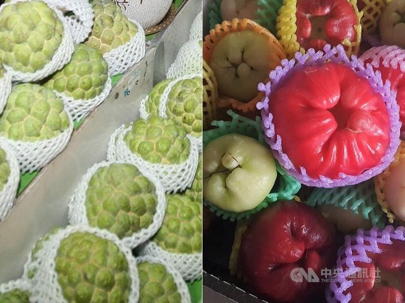 Custard apples (left) and wax apples. CNA file photo
