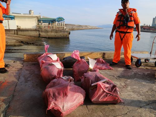 捕獲したイルカ解体の船長を送検  野生動物保育法違反で/台湾