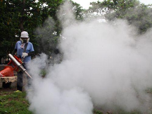 <デング熱>止まらぬ感染拡大  患者数が過去最多に/台湾