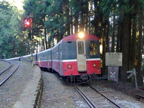 阿里山森林鉄路管理処提供
