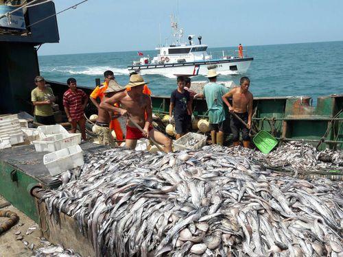 新竹海巡隊提供