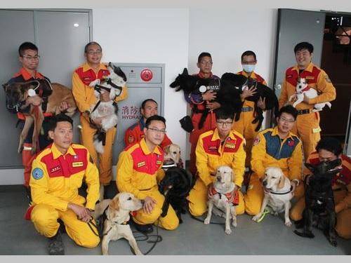 内政部(内務省)から表彰される救助犬