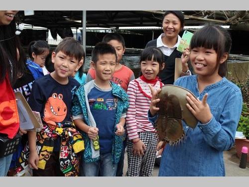 カブトガニを手に持ち笑顔を見せる子どもら
