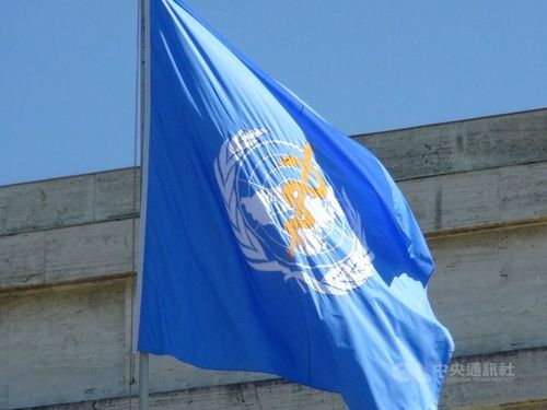 WHOの旗=資料写真