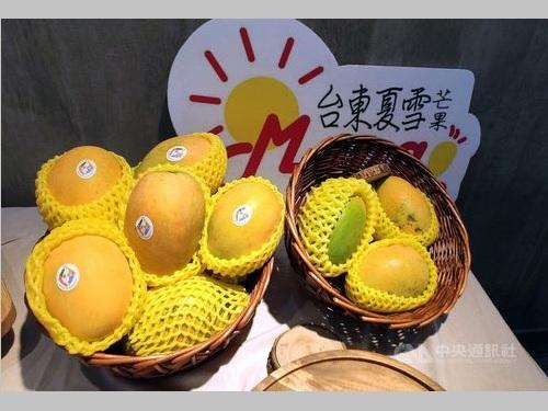 台湾東部・台東県産のマンゴー「夏雪」