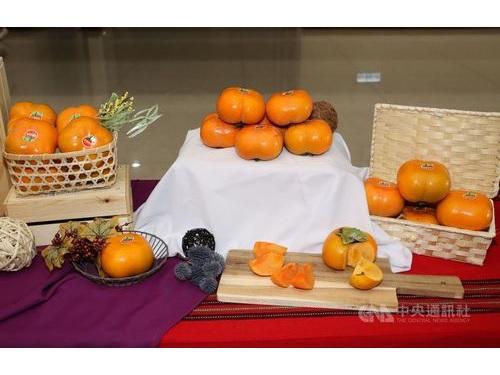 苗栗県泰安郷産の甘柿=同県政府提供