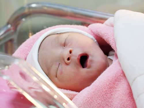 台湾の人口、初の「自然減」に 2020年の出生数が死亡数を下回る