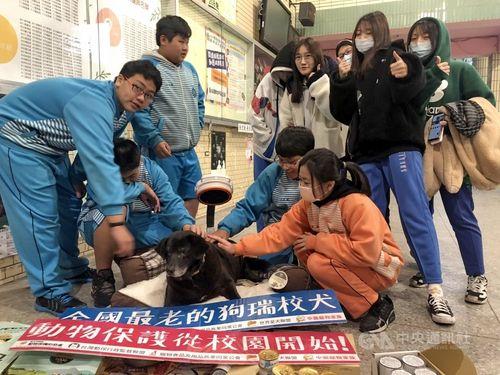 樹林高校の生徒や教職員に愛される犬の「小黒」=新北市政府提供