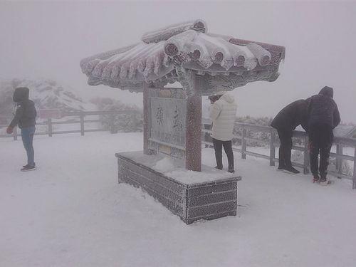 今季最大となる約10センチの積雪を観測した武嶺(南投県)=読者提供