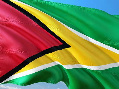 ガイアナの国旗=ピクサベイから