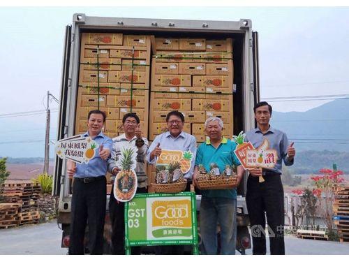 日本向けに出荷される県産パイナップルの梱包を視察した潘孟安・屏東県長(中央)。写真=同県政府提供