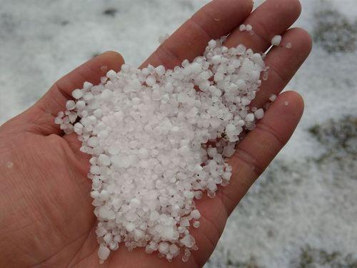玉山で降った霧雪=中央気象局提供
