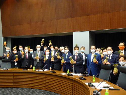 台湾産パイナップルを手に持つ自民党「保守団結の会」のメンバーら