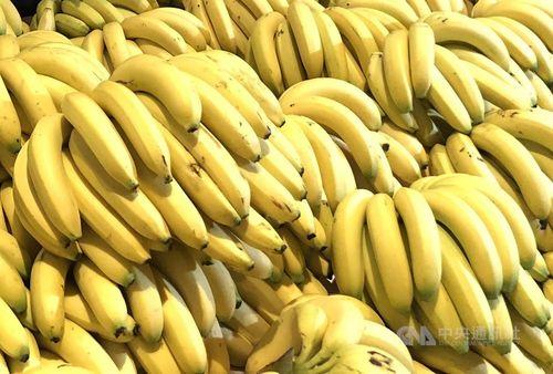 台湾産バナナ