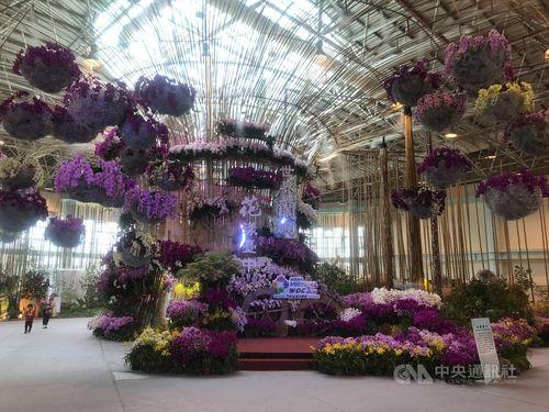 コロナ禍で延期の世界蘭会議、台湾で開幕 バーチャル展示6月末まで=写真は台中市政府