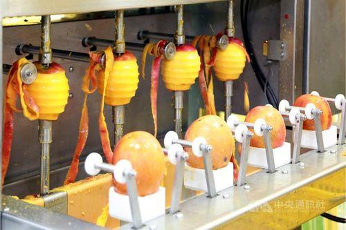 27日に操業を始めたマンゴー1次加工工場=台南市政府提供