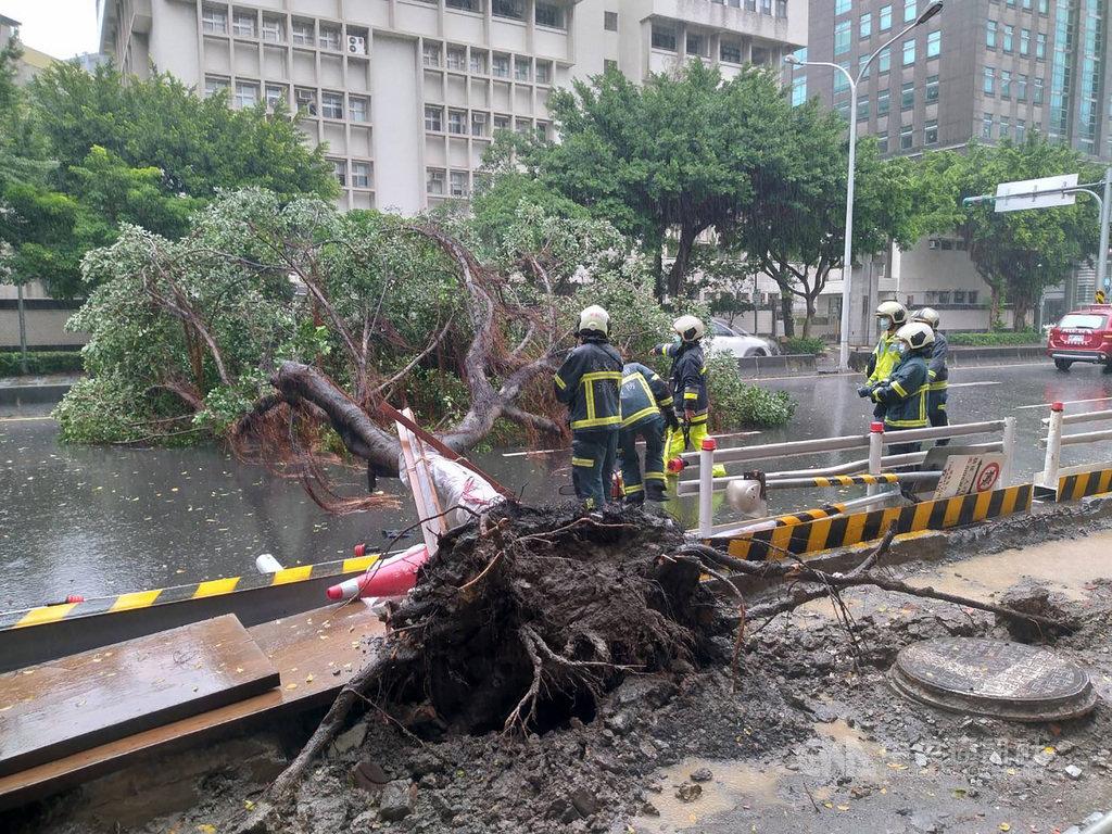 台風14号 一時3万戸近くが停電 倒木の被害76件/台湾