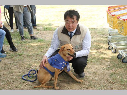 野良犬から公務員に転身したシンデレラ犬「園長」が就任 台南市の観光名所