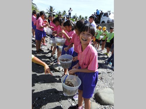 台湾東部海域のサンゴを守れ 地元の人々がスズメダイの稚魚を放流
