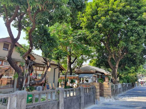 「台湾一美しい」文化創意園区 春節イベントで賑わいあふれる