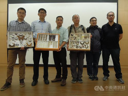 Taiwan researchers use AI in study of moth color diversity