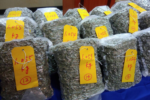 Canadian nabbed at Taiwan airport with NT$100 million worth of cannabis