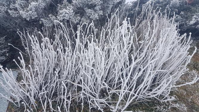 Frosty winter scene on Jade Mountain
