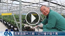 台商深耕越南 代工生產F1種子