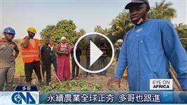 永續農業夯 多哥農夫力推