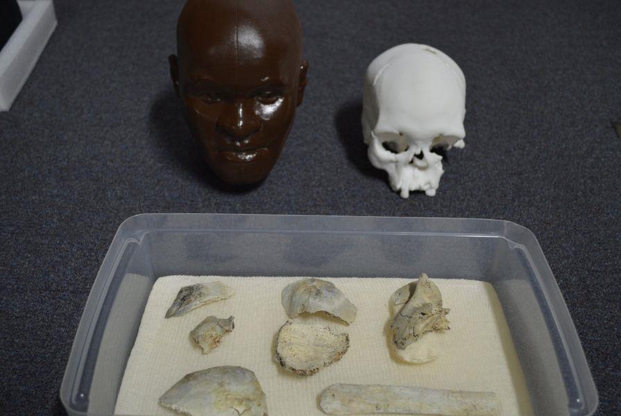 9月初巴西里約國家博物館發生火災,博物館研究員19日證實尋獲已有逾萬年的美洲大陸最古老人類化石「露西亞」約8成頭骨碎片。(圖取自twitter.com/MuseuNacional)