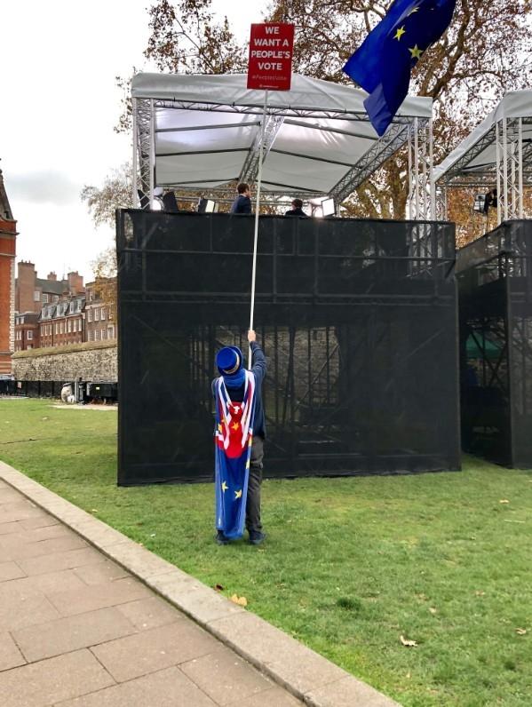 布瑞(圖)戴了與歐盟旗幟一致黃條紋藍帽,是抗議脫歐現場的常客。(圖取自twitter.com/snb19692)