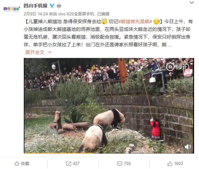 四川9日發生小女孩掉進貓熊飼育池的事故,正逢春節假期,許多遊客圍觀驚叫,在動物園保安人員伸手救援下,小女孩驚險躲開兩隻大貓熊。(圖取自四川手機報微博)