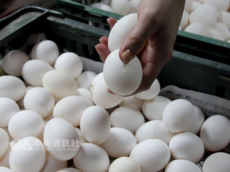 農委會13日表示,最近學校陸續開學,雞蛋用量增加,23日起啟動進口供應加工業。(中央社檔案照片)