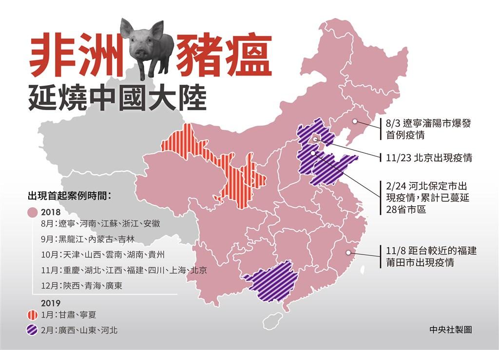 中國目前未發現非洲豬瘟的省區只剩下新疆、西藏和海南3處。(中央社製圖)