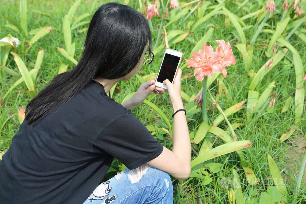 「2019城市自然大挑戰」全球性活動26日起展開,為期4天,台灣首度以嘉義縣市代表參與,歡迎民眾多多拍攝嘉義縣巿野生動植物並上傳iNaturalist平台,幫助增加全球生物多樣性資料庫資料,也有助提昇台灣國際能見度。(嘉義大學提供)中央社記者江俊亮傳真 108年4月23日
