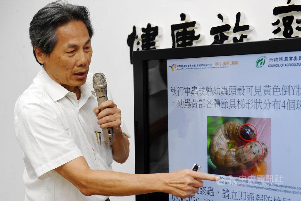 農委會13日指出,繁殖力強的秋行軍蟲已進入中國,台灣已加強邊境、境內監測。防檢局長馮海東(圖)指出,秋行軍蟲幼蟲的特徵為頭部有倒Y型紋路,每一節身軀有4個斑點,若民眾發現可撥打專線通報。中央社記者施宗暉攝 108年5月13日