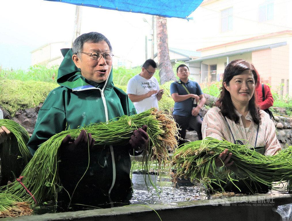 台北市長柯文哲(左)18日南下高雄到美濃參訪水蓮農家,體驗水蓮栽種及了解水蓮清洗方式。中央社記者王淑芬攝 108年5月18日