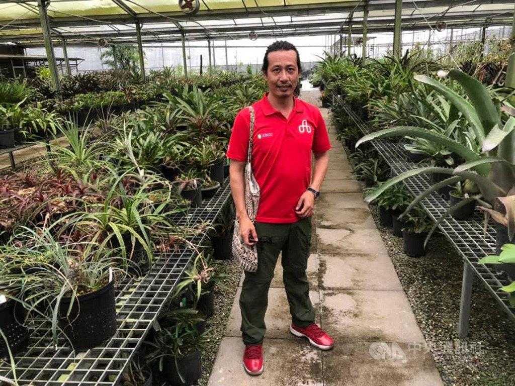 位在屏東縣高樹鄉的辜嚴倬雲熱帶植物保種中心,總共由17座溫室組成,蒐藏3萬多種植物,對於在這裡任職2年的研究助理洪信介而言,這並不只是一份工作,也是他漂泊一生,終於找到的安身之處。中央社記者吳柏緯攝 108年8月17日