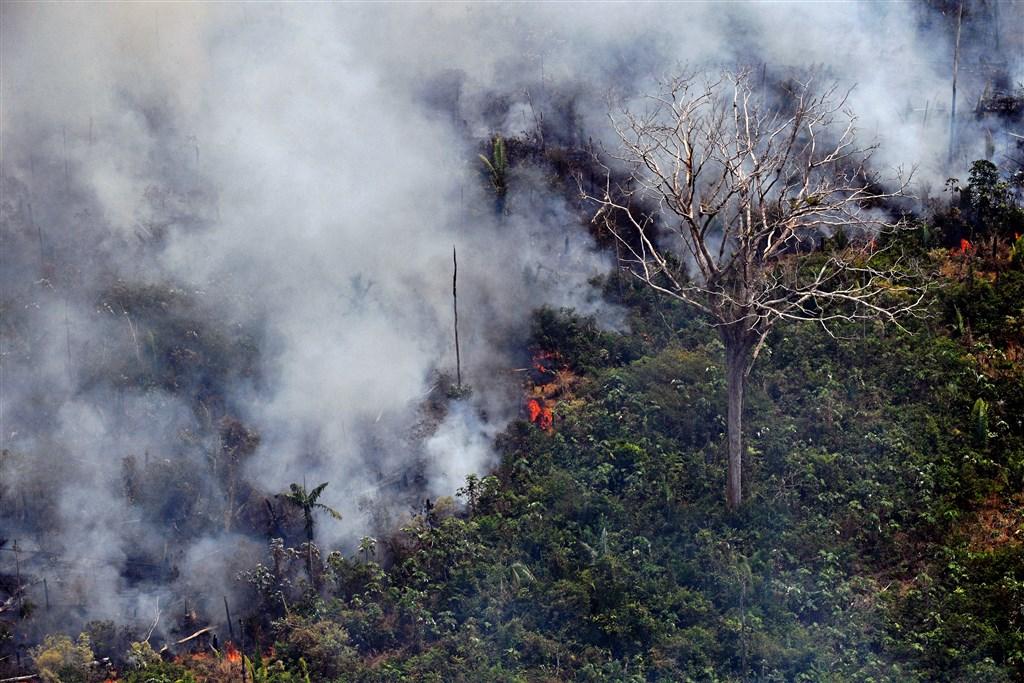地球之肺亞馬遜雨林遭大火吞噬,延燒速度快且範圍廣,引發關注。(法新社提供)
