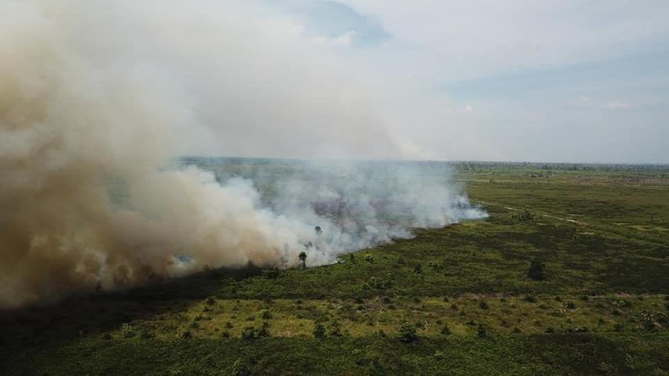 印尼蘇門答臘島部分地區和婆羅洲的加里曼丹省最近幾週森林大火肆虐。(圖取自twitter.com/IAR_updates)