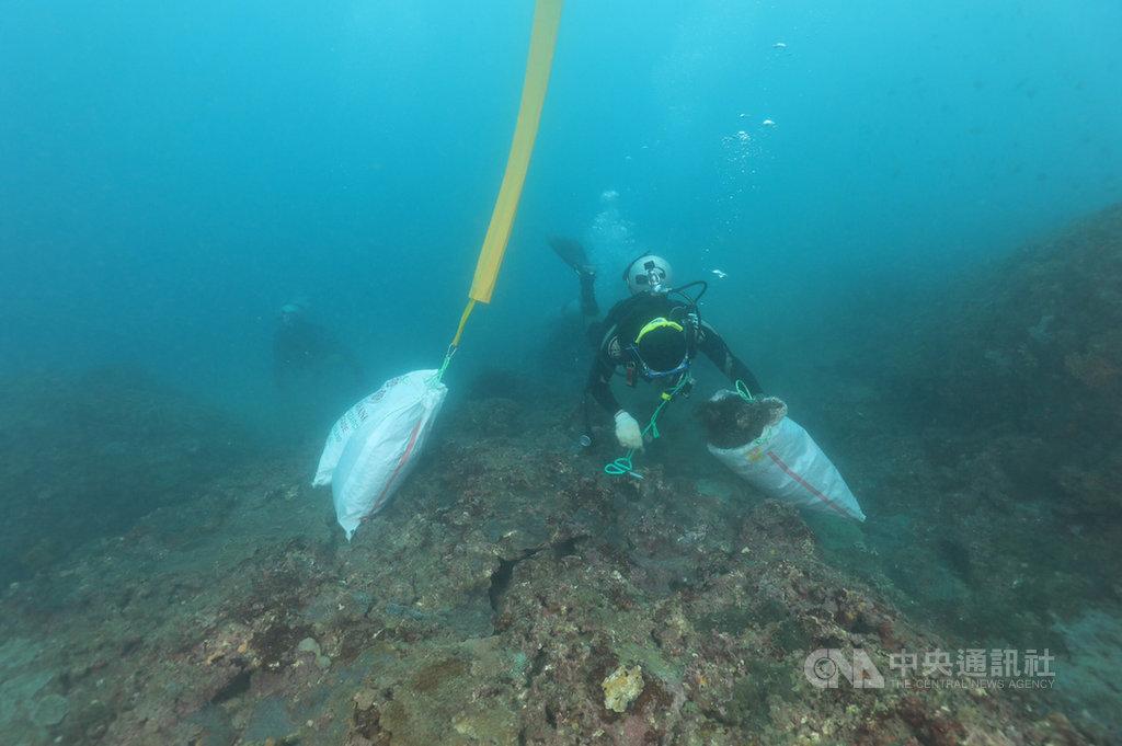 新北市海洋防衛隊105年8月成立,協助維護海洋生態,至今累計清除約12噸的海底廢棄漁網具;今年升級為積極保育海洋環境與復育資源的海洋防衛隊2.0。(新北海洋防衛隊提供)中央社記者葉臻傳真  108年9月19日