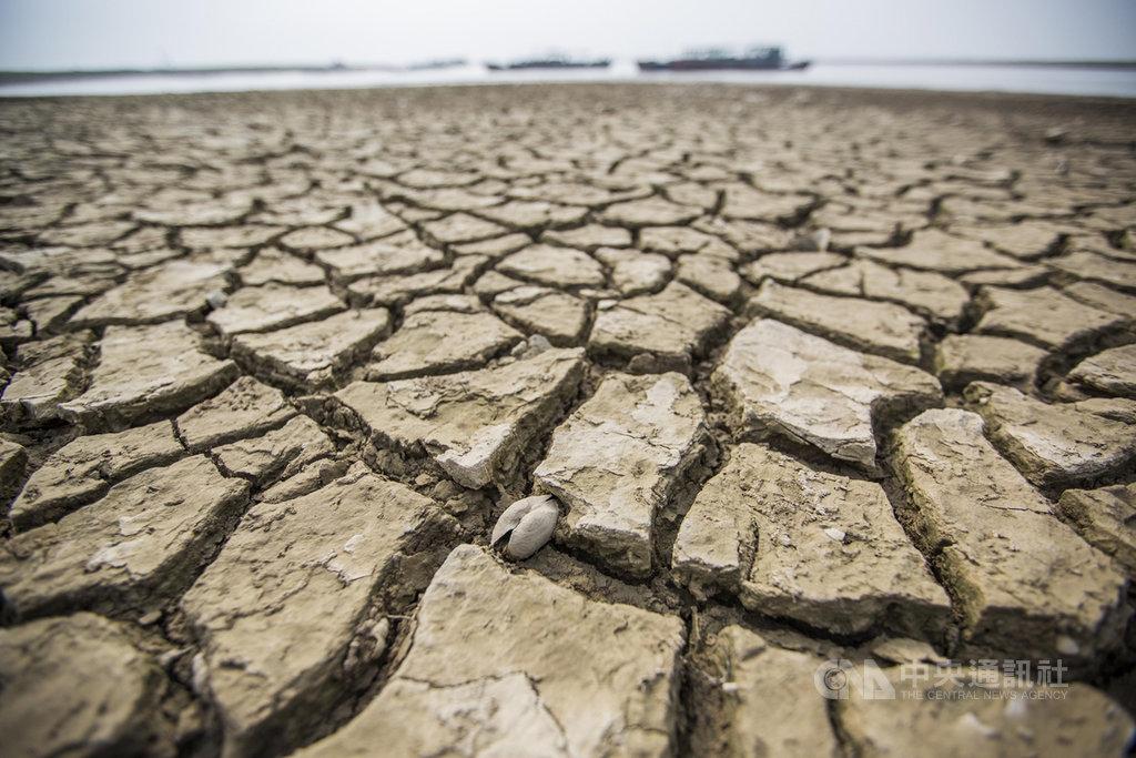 江西九江市境內的鄱陽湖湖床因為乾旱而龜裂。(中新社提供)中央社  108年10月12日