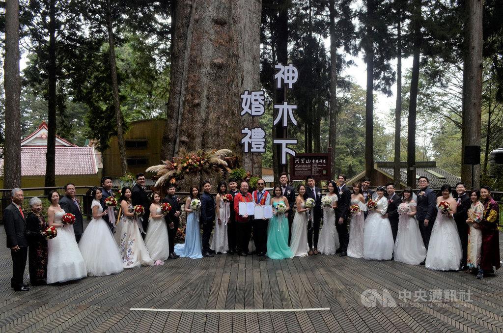 交通部觀光局阿里山國家風景區管理處,20日舉辦第13屆「阿里山神木下婚禮」活動,來自馬來西亞、香港、美國等國內外15對新人,在阿里山香林神木的見證下,要共度一生。中央社記者蔡智明攝 108年10月20日